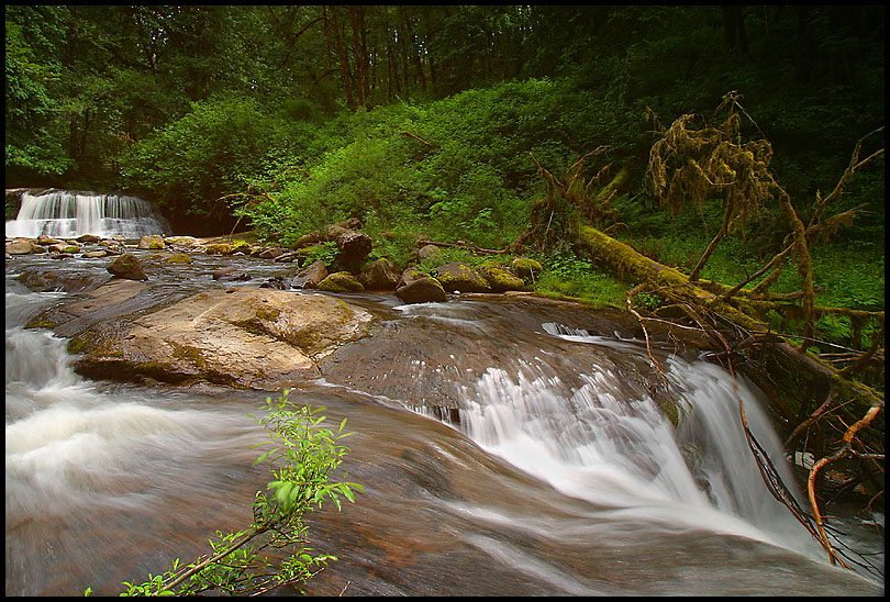 McDowell Creek Falls #3